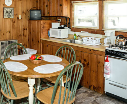 round kitchen table with four green chairs, wall of appliances behind set under brightly lit windows