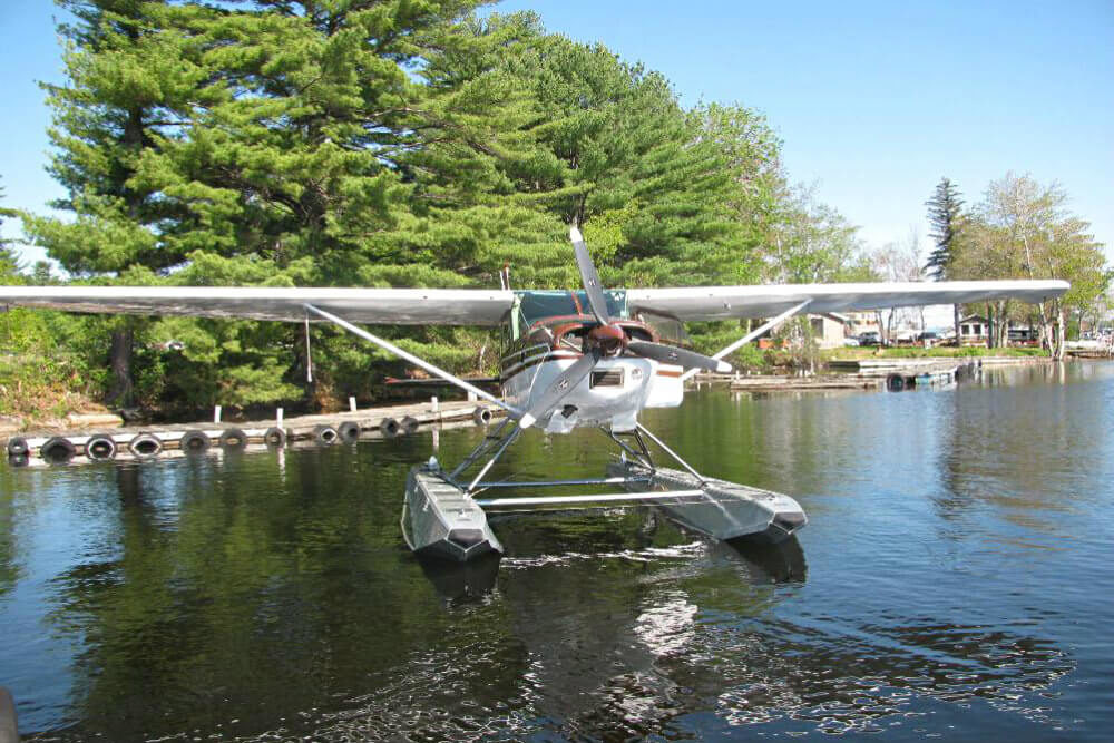 seaplane in lake near shore of pine trees
