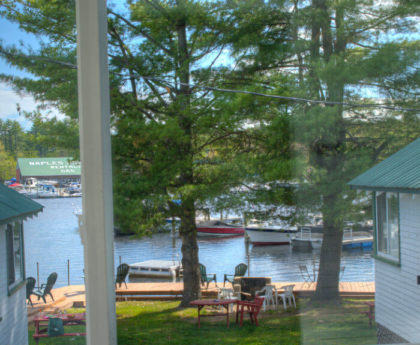 two large pine trees with blue water beyond viewed through porch window