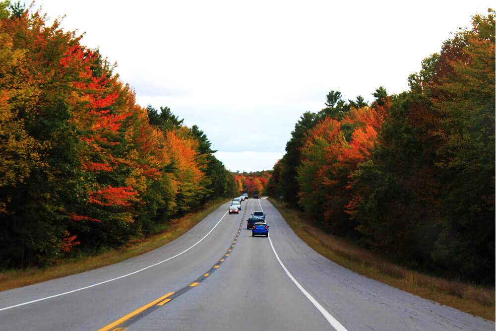 cars traveling both directions on a two-lane country road surrounded by fall foliage